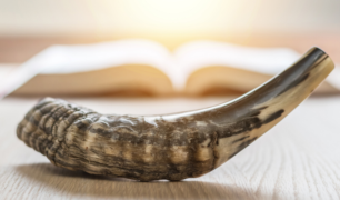 Shofar with an out of focus book in the background